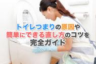 トイレつまりの原因や簡単にできる直し方のコツ10選を完全ガイド