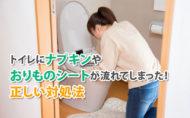 トイレにナプキンやおりものシートが流れてしまった!正しい対処法